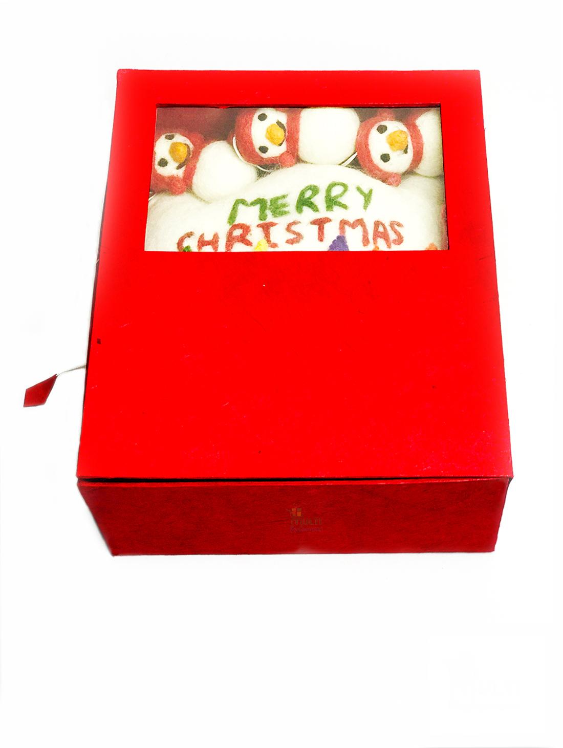 CHRISTMAS  GIFT PACK -MVSEB-G02